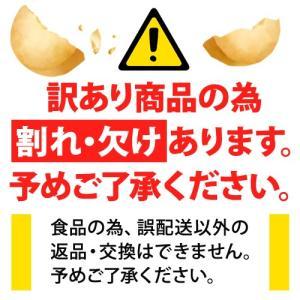 【訳あり・割れ】ダイエットクッキー お試し 250g わけあり 豆乳おからゼロクッキー 325130-01|k222|04