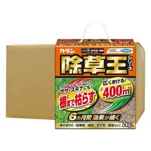 カダン除草王シリーズ オールキラー粒剤 2kg×10個 ka-dotcom