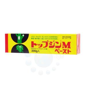殺菌癒合剤 トップジンMペースト 200g 殺...の関連商品6