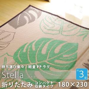【送料無料】水洗いのできるアクセントラグ幅180×230cm3畳用屋外でも使えるラグマットリビングマットレジャーシートグリーン|kaagu-com