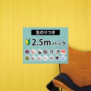 はじめての壁紙DIYにおすすめの【2.5mパック】の生のり付き壁紙 クロス。 目盛付きフィルムなので...