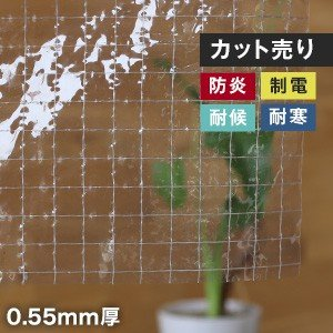 ビニールカーテン 【カット販売】 糸入り透明 ビニールカーテン生地 オールマイティ RVC-55  ...
