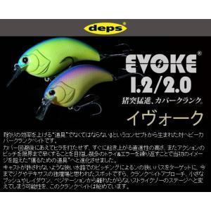 deps EVOKE デプス イヴォーク 1.2 #02ブルーバックチャート 4544565 108024 kabu-kazumi