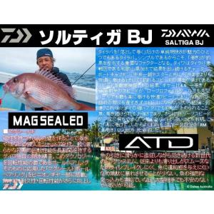 ※ダイワ 17ソルティガ BJ  200SH DAIWA SALTIGA BJ 4960652088336 2017Debut|kabu-kazumi|02