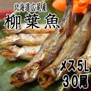 ししゃも メス5Lサイズ30尾 北海道広尾産 十勝港 子持ちシシャモ|kabusui