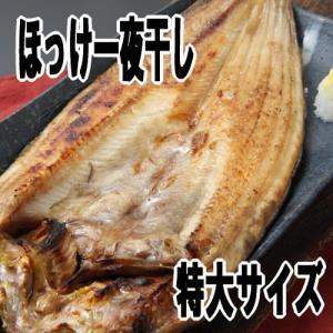 開きほっけ【特大サイズ】一夜干し 北海道産|kabusui