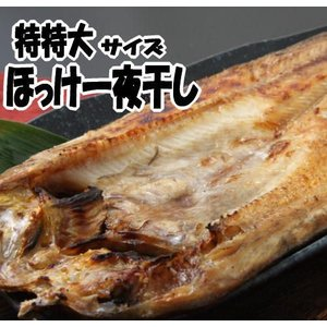 開きほっけ【特特大サイズ】一夜干し 北海道産|kabusui