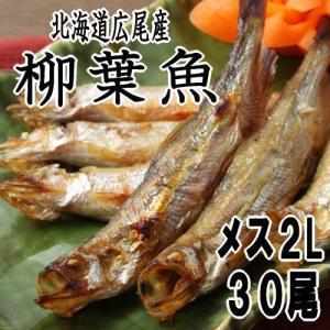 ししゃも メス2Lサイズ30尾 北海道広尾産 十勝港|kabusui