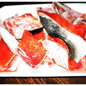 時鮭 アラ・切り落とし アラ汁用パック|kabusui
