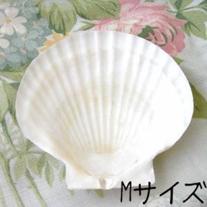 デコパージュ用 シェルMサイズ[ホタテ貝]デコパージュ 貝のプレート石鹸受け・ソープトレー|kaderia
