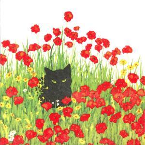 ペーパーナプキン[メール便OK]10枚入り 黒猫とポピー  Black Cat Poppiesppd[Paper Products Design]ドイツ製デコパージュ・ネコ・猫・ねこ・cat・キャット|kaderia