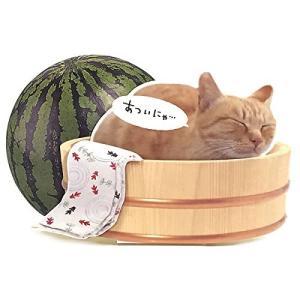 S4244-4040 夏カード 桶に猫  [Sanrio]サンリオメッセージカード・立体カード・ サマーグリーティング・ 暑中見舞い|kaderia