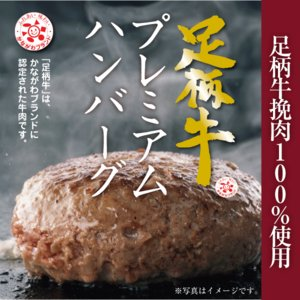 足柄牛プレミアムハンバーグ(150g×1個入)|kadoyabokujou