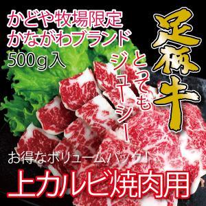 足柄牛上カルビ焼肉用500g 国産牛 かながわブランド|kadoyabokujou
