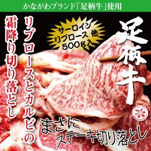 足柄牛リブロースとカルビの霜降り切り落とし500g 面取り 焼肉 かどやファーム|kadoyabokujou