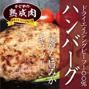 ドライエイジングビーフハンバーグ(150g×1個入)|kadoyabokujou