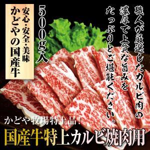 国産牛特上カルビ焼肉用500g|kadoyabokujou