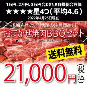 おまかせ焼肉バーベキューセット 20,000円 国産牛 国産素材 BBQ 送料無料