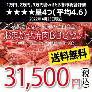 おまかせ焼肉バーベキューセット 30,000円 国産牛 国産素材 BBQ 送料無料|kadoyabokujou