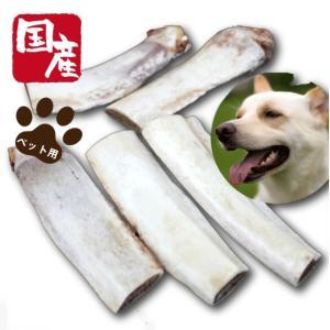 ペット用国産牛バラ骨500g 【セール】|kadoyabokujou