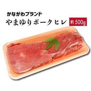 豚肉 ヒレ 約500g やまゆりポーク かながわブランド|kadoyabokujou