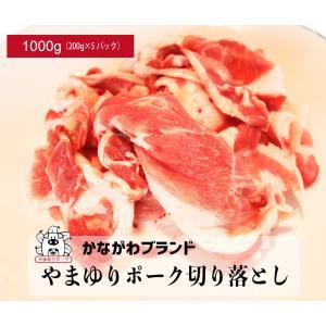 豚肉切り落とし1kg(200g×5パック) やまゆりポーク かながわブランド
