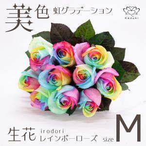 レインボーローズ ヴィヴィッド 花束 追加用オプション 生花 バラ