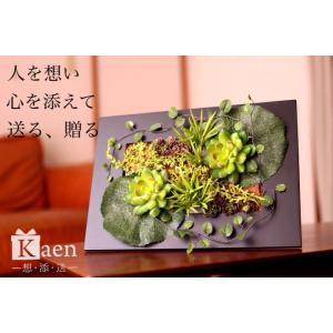 壁掛け大 グリーン 多肉 フレーム 造花 お誕生日 退職祝い 結婚  男性 送料無料 還暦 長寿 ギフト プレゼント|kaen