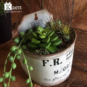リビングや書斎に!置くだけインテリア多肉植物寄せ植えヴィンテージ缶(フェイクグリーン)|kaen