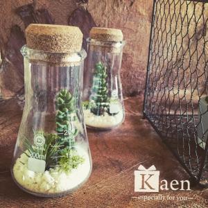 リビングや書斎に!置くだけインテリア多肉植物寄せ植えフラスコ(フェイクグリーン)|kaen