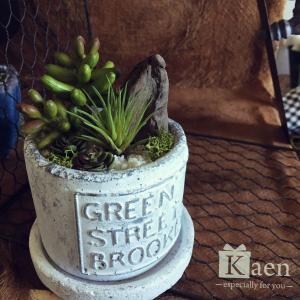 リビングや書斎に!置くだけインテリア多肉植物寄せ植えホワイトヴィンテージ(フェイクグリーン)|kaen