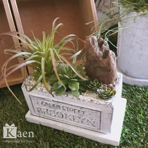 リビングや書斎に!置くだけインテリア多肉植物寄せ植えホワイトヴィンテージ 02(フェイクグリーン)|kaen