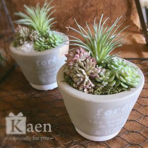 リビングや書斎に!置くだけインテリア多肉植物寄せ植えグレーミニ(フェイクグリーン)|kaen
