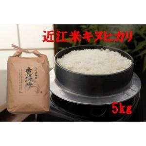 令和1年産 特別栽培米「キヌヒカリ」 5kg