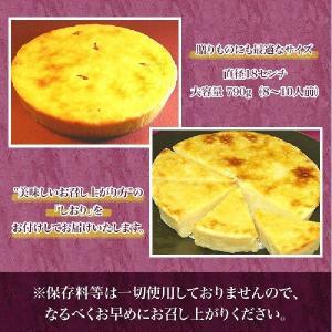 ※箱なし簡易包装 送料無料 スイーツ スイートポテトとかりんとう饅頭12個のセット|kagairo
