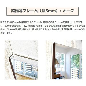 割れない鏡 割れないミラー リフェクス リフェクスミラー フィルムミラー 鏡 ミラー 壁掛け鏡 姿見 姿見鏡 (特注サイズ): RjM-42/50x100-o5|kagami|03