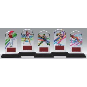 各種競技楯 CEL-5565|kagawakisho