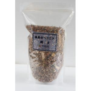 根茎性ベゴニアの用土|kagoen-nursery