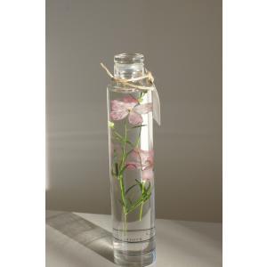 花咲くハ―バリウム デルフィニウム delphinium(ピンク)花、ガーデニング ハーバリウム (44693)|kagoen-nursery