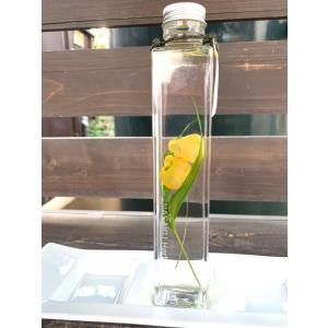 花咲くハ―バリウム サンダーソニア Sandersonia aurantiaca 花、ガーデニング ハーバリウム (44693)|kagoen-nursery