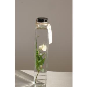 花咲くハ―バリウム ミニバラ(ホワイト)花、ガーデニング ハーバリウム (44693)|kagoen-nursery