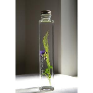 ビオラ 花咲くハーバリウム |kagoen-nursery