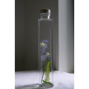 花咲くハーバリウム デルフィニウム ブルー|kagoen-nursery