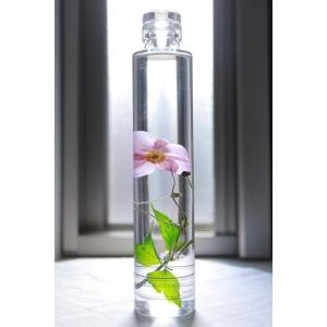 シュウメイギク 花咲くハーバリウム|kagoen-nursery