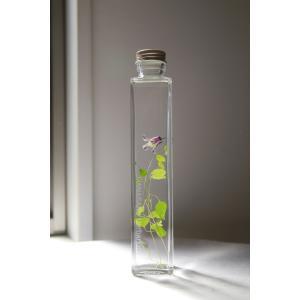 クレマチス 花咲くハーバリウム|kagoen-nursery