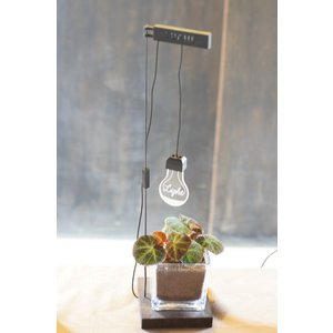 植物育成ライト ルーチェ 【LIGHT】花、ガーデニング その他花、ガーデニング (4101) kagoen-nursery