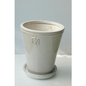 Rose de Noel parfaite 5号M size 花、 園芸用品 鉢、プランターカバー  庭、ガーデニング 鉢、 鉢、プランターカバー (4054)|kagoen-nursery