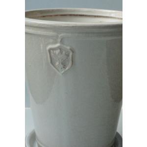 Rose  de Noel Parfaite 7号Lサイズ 花、ガーデニング 園芸用品 鉢、プランター 庭、ガーデニング 鉢、プランターカバー (4054)|kagoen-nursery