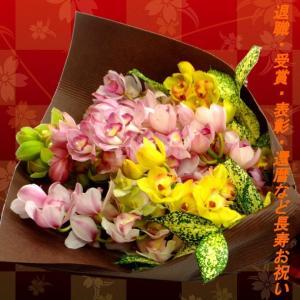 洋蘭 シンビジューム 花束 10本 徳島県産 送料無料