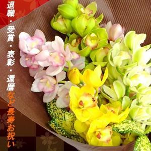 洋蘭 シンビジューム 花束 5本 徳島県産 送料無料